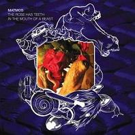 Okładka Matmos - The Rose Has Teeth In The Mouth Of A Beast