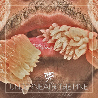 Okładka Toro Y Moi - Underneath The Pine