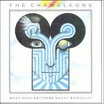 Obrazek pozycja 78. The Chameleons - What Does Anything Mean? Basically (1985)